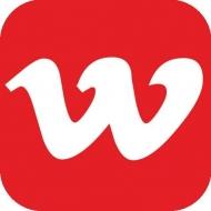 WEB Dizayn Studiya